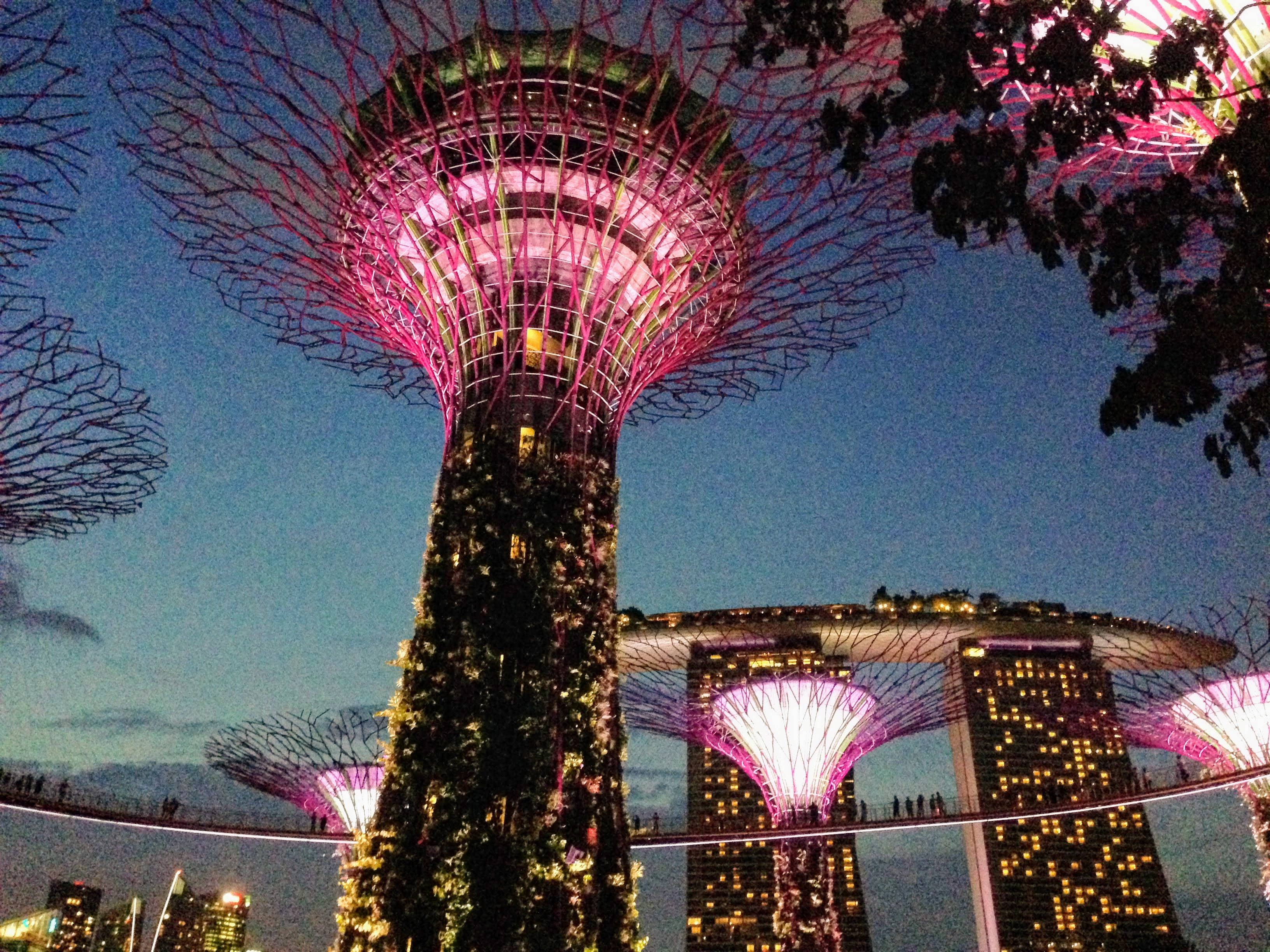 Gardens by the Bay Singapore artificial trees
