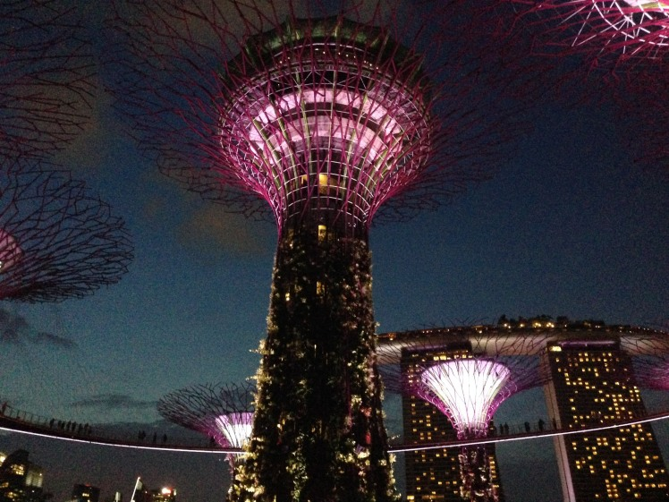 Gardens by the Bay Singapore lightshow artifical trees Marina Bay Sands hotel
