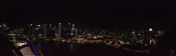 Marina Bay Sands hotel rooftop Singapore view