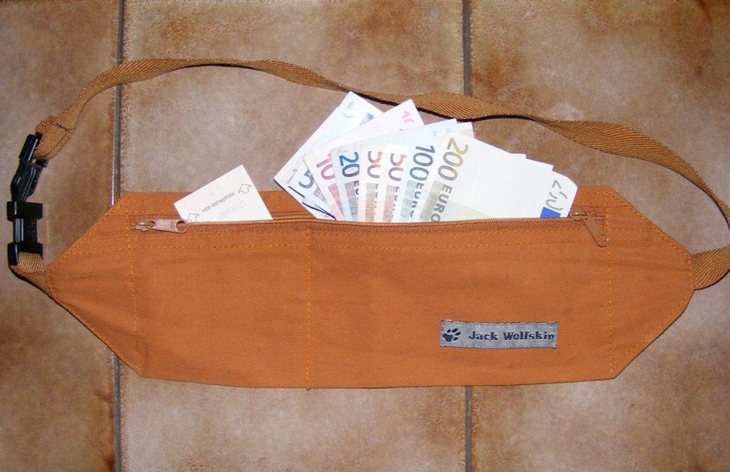 money belt travel gadget