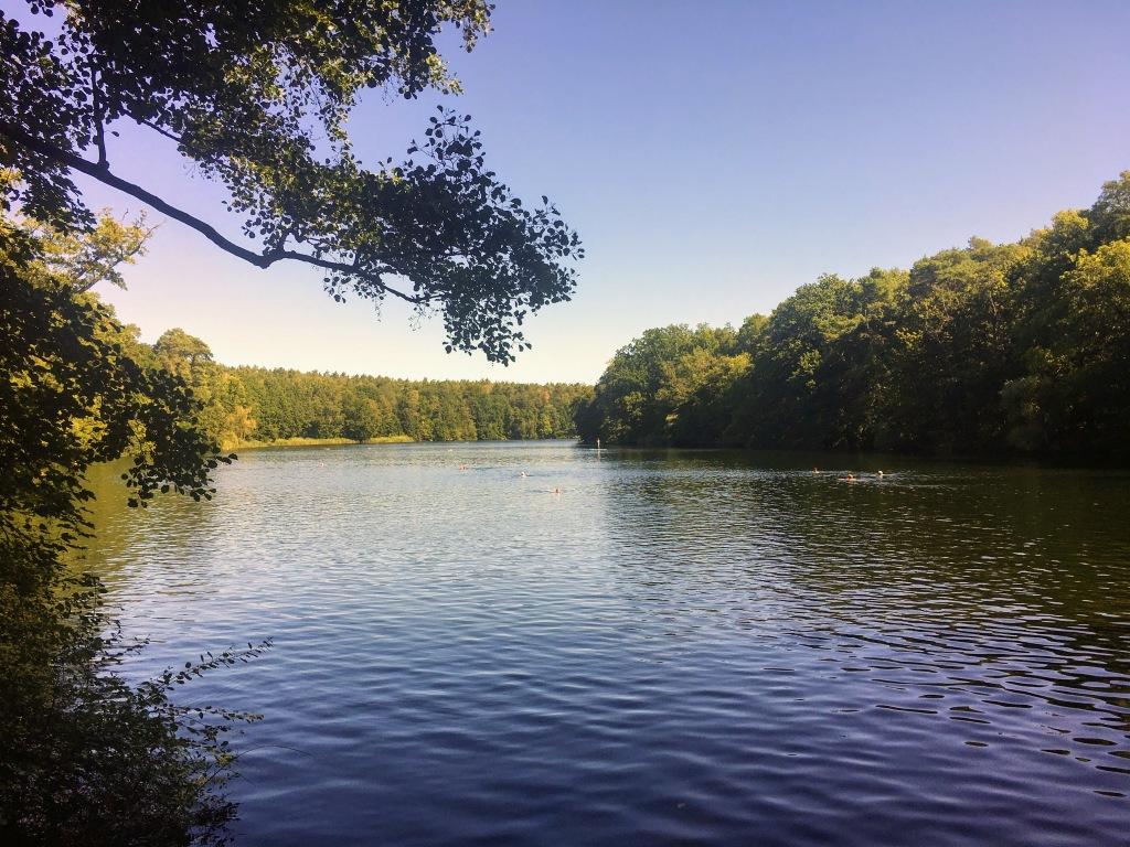 Berlin Krumme Lanke lake summer