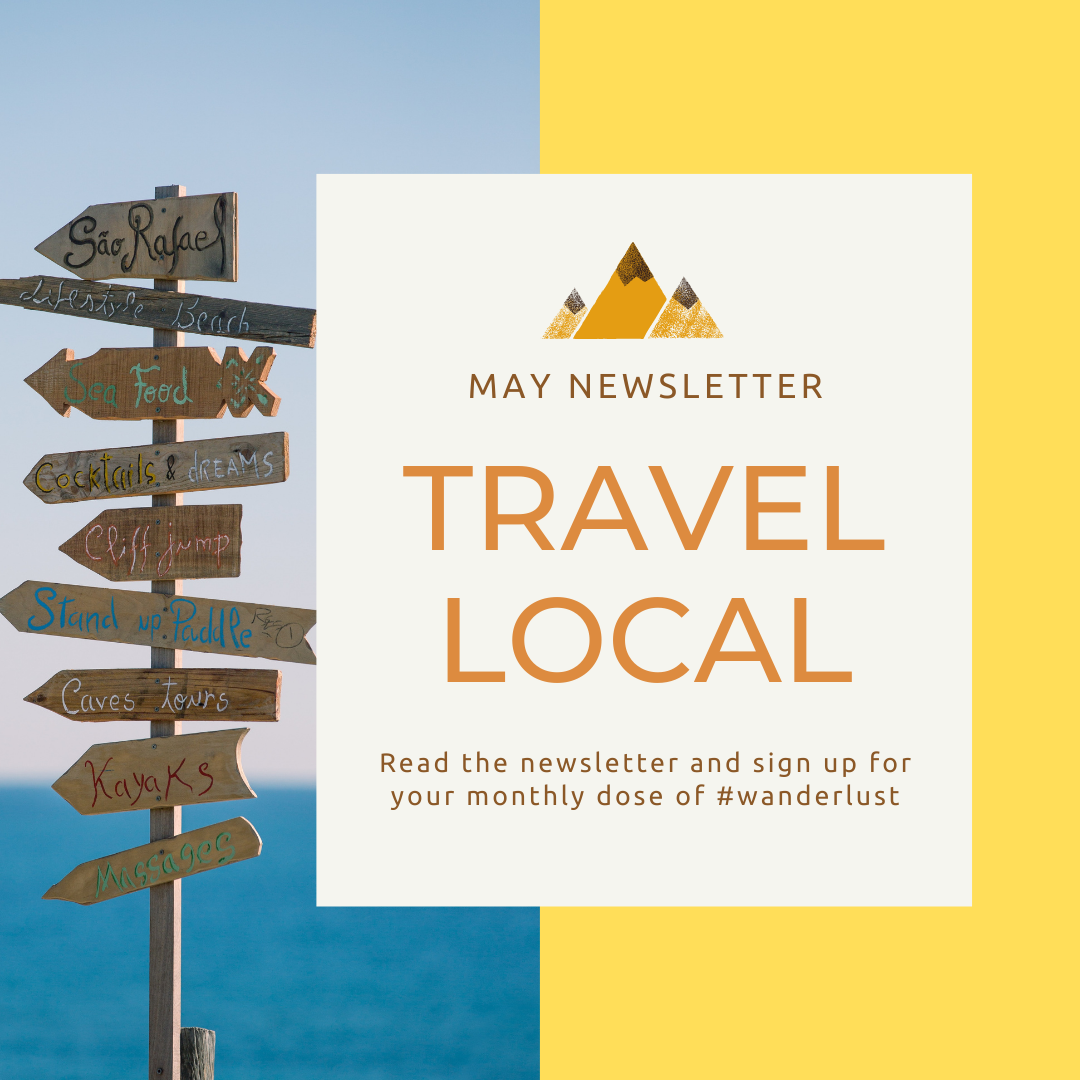 newsletter february travel from home wanderlust puppy couch